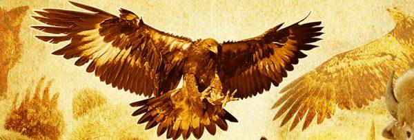 6555d9ad41 A Águia vai por cima - Xamanismo