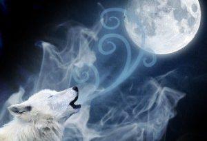 As Luas na Roda Medicinal